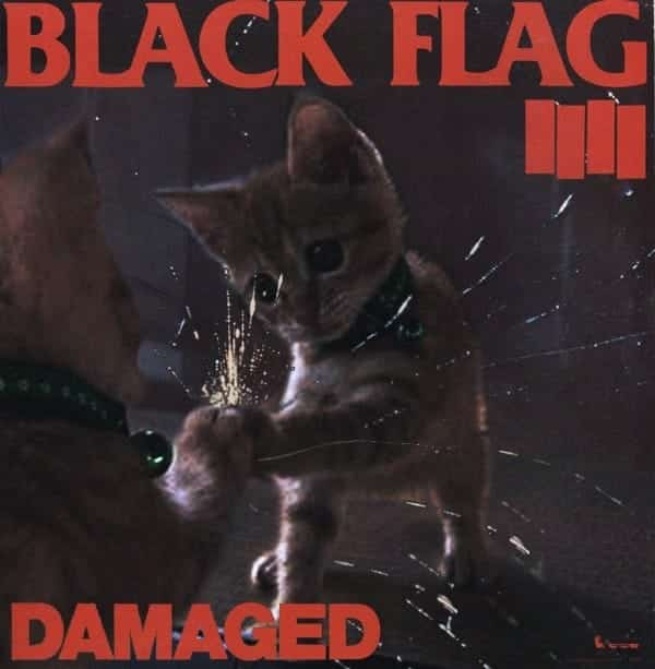 "Cat Flag, ""Damaged"""